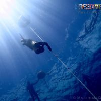 An Insightful Weekend Prelude to Free Diving