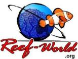 Reef World Foundation