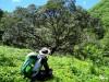 Cebu Highlands Trail Segment 4a: Ginatilan to Lawaan,Danao