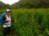 Cebu Highlands Trail Segment 5: Nug-as, Alcoy to Upper Beceril,Boljoon